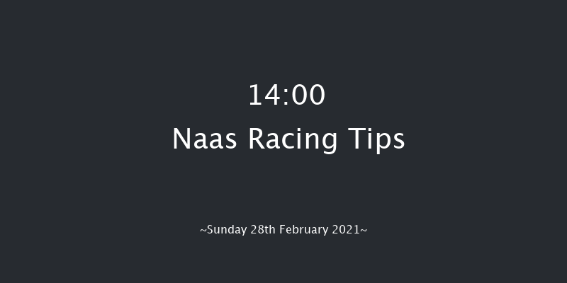 WhatOddsPaddy Chase (Grade 3) Naas 14:00 Conditions Chase 16f Sat 13th Feb 2021