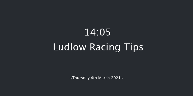 Forbra Gold Cup Handicap Chase Ludlow 14:05 Handicap Chase (Class 3) 24f Wed 24th Feb 2021