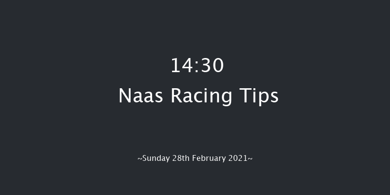 Paddy Power 'From The Horse's Mouth' Podcast Novice Handicap Chase (Grade B) Naas 14:30 Handicap Chase 20f Sat 13th Feb 2021