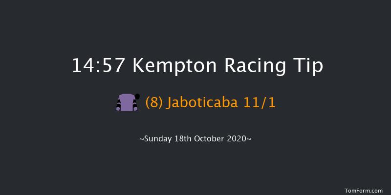 Bet At Racingtv.com Handicap Chase Kempton 14:57 Handicap Chase (Class 3) 18f Wed 14th Oct 2020