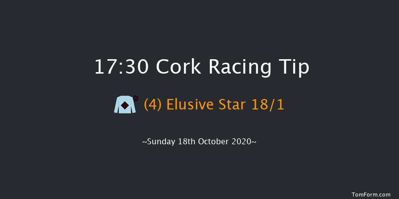 Cork (Pro/Am) Flat Race Cork 17:30 NH Flat Race 19f Tue 13th Oct 2020