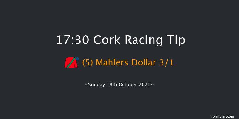 Cork (Pro/Am) Flat Race Cork 17:30 NH Flat Race 19f Tue 13th Oct 2020